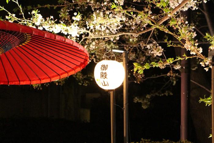 満開の桜をライトアップ。幻想的に浮かび上がる桜と、歴史ある御殿山庭園の風情あふれる夜の景色がベストマッチです。